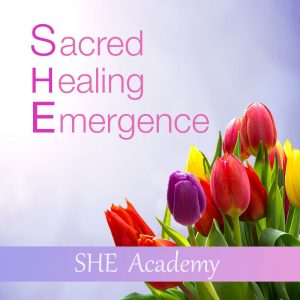 SHE Academy Master Classes